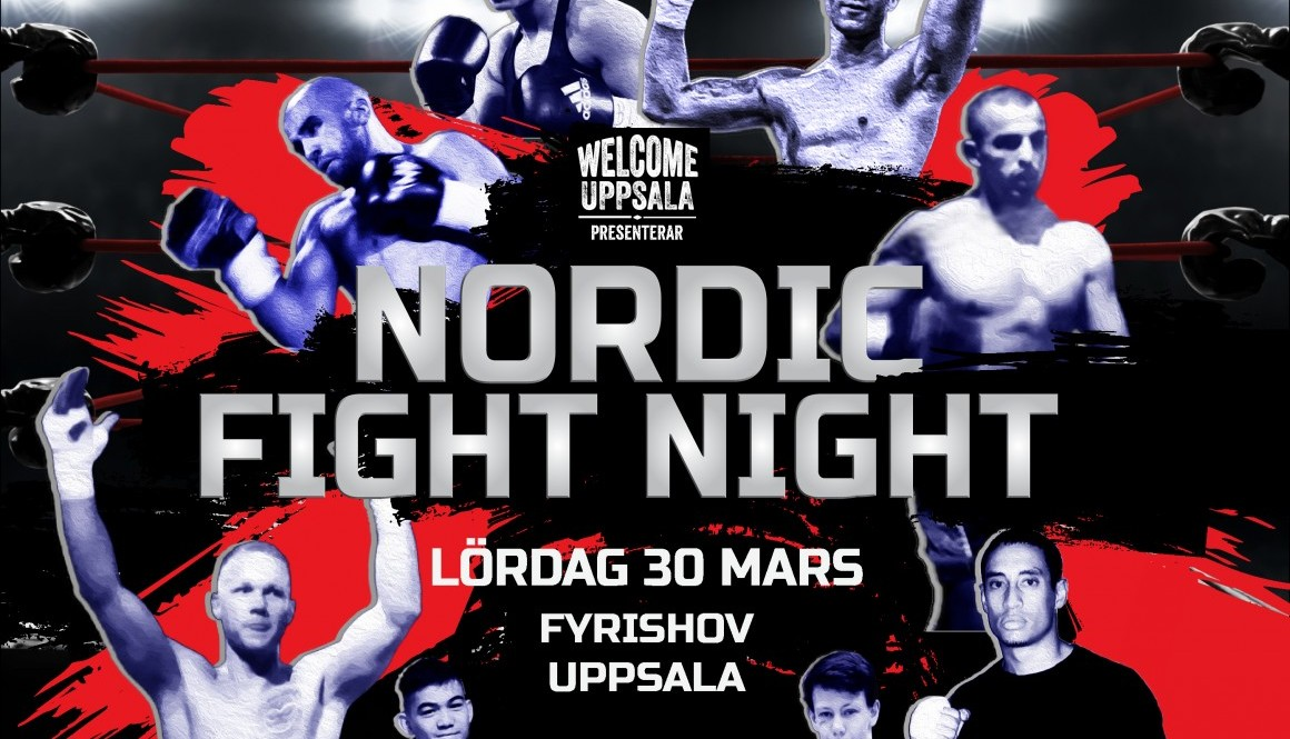 Nordic Fight Night